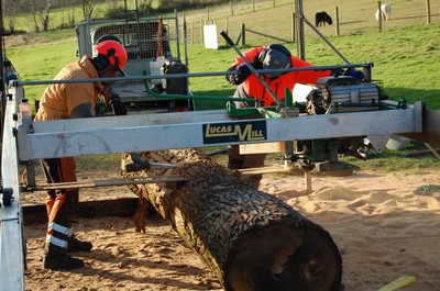 Primary log conversion 4th-9th January 2012 (6)