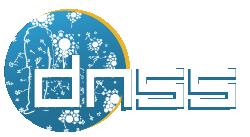 logo dnss2